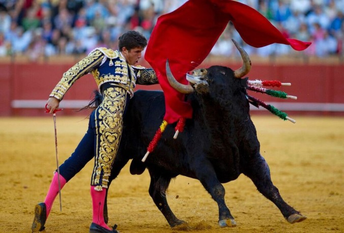 Image result for bullfighting spain